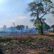 Fiscalização ambiental municipal leva autor de queimada à prisão